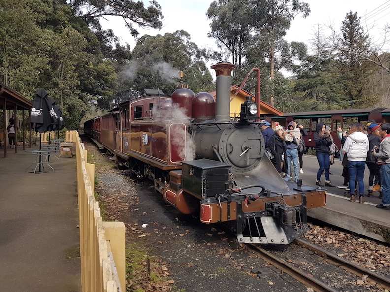 puffing billy tour 蒸汽小火車