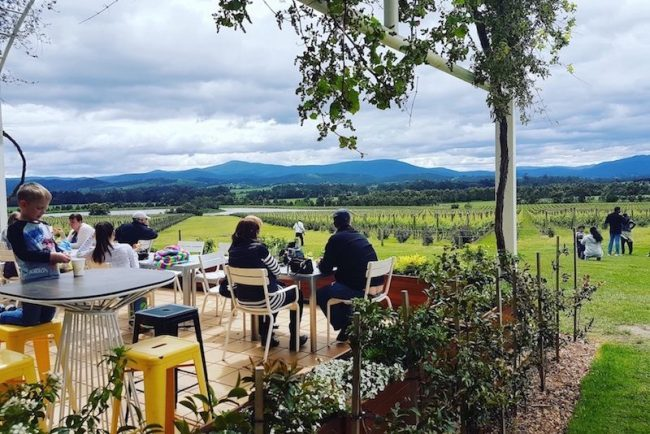 yarra valley tour