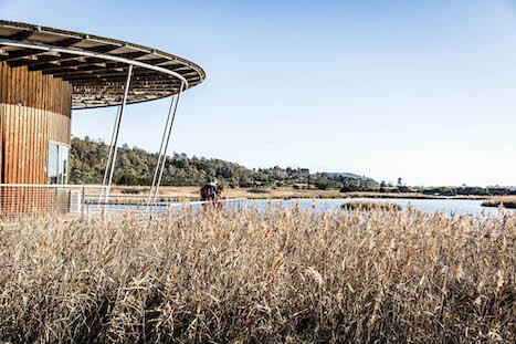 馬河濕地公園 – Tamar Island Wetlands